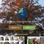 vita arborea Wald- und Baumpflege GmbH
